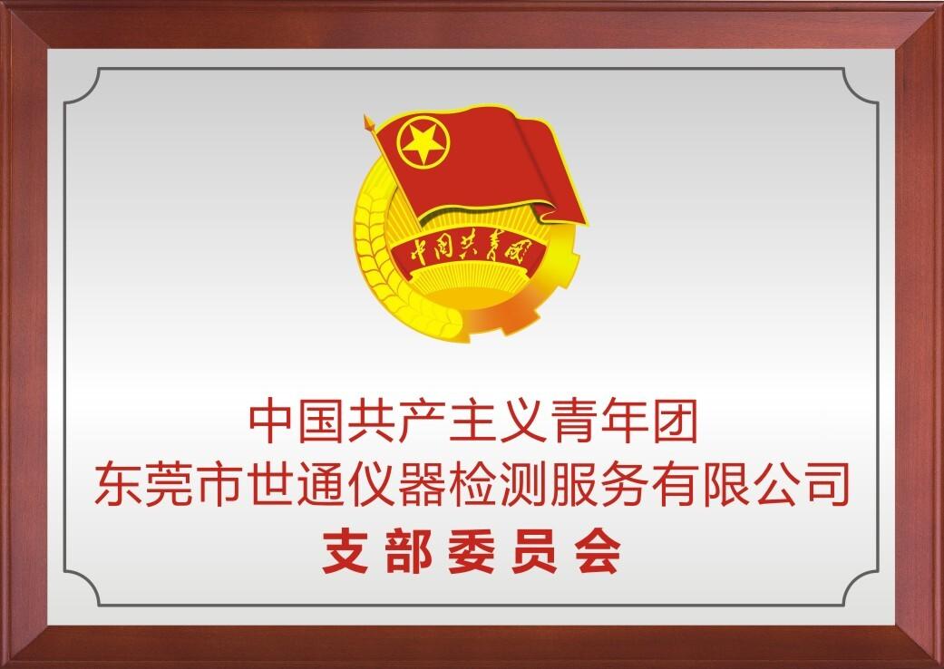 世通仪器共青年支部委员会